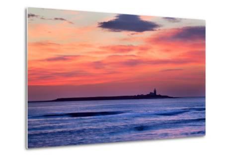 Coquet Island-Mark Sunderland-Metal Print