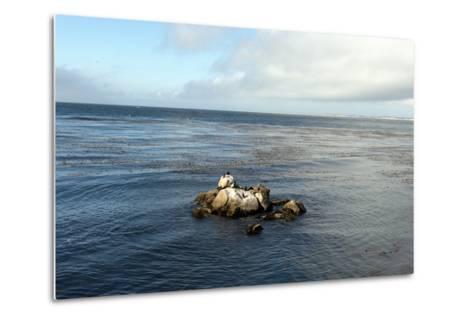 Monterey Bay-Carol Highsmith-Metal Print