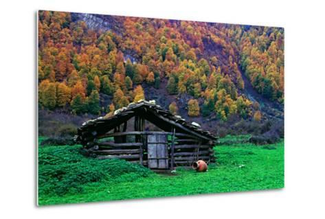 A Wooden Hut in an Autumn Landscape of Colorful Maple Trees in the Dohezar Forest-Babak Tafreshi-Metal Print