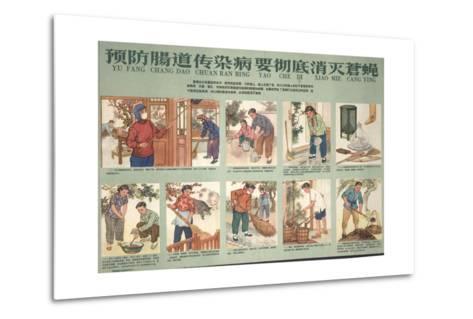 Housekeeping and Eliminating Flies--Metal Print