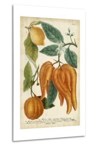 Exotic Citrus I-Weinmann-Metal Print