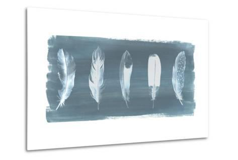 Feathers on Dusty Teal I-Grace Popp-Metal Print