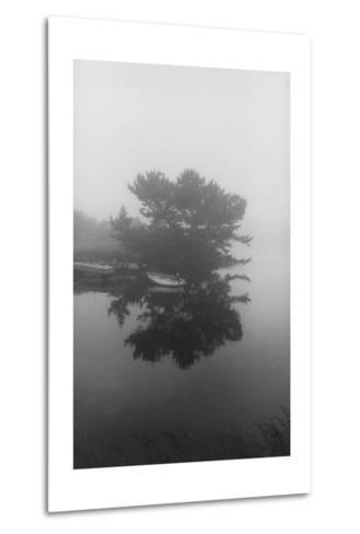 Block Island Boat Trees-Henri Silberman-Metal Print