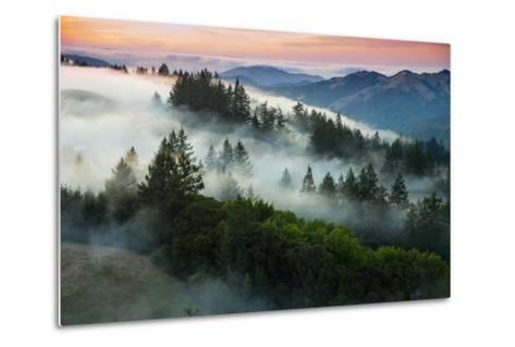 Night Comes Down Fog Rolls In, Northern California Coast-Vincent James-Metal Print