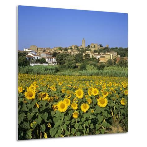 Hilltop Village Above Sunflower Field, Pals, Catalunya (Costa Brava), Spain-Stuart Black-Metal Print