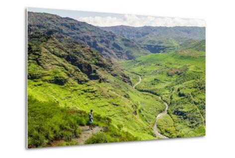 Waimea Canyon State Park, Kauai, Hawaii, United States of America, Pacific-Michael DeFreitas-Metal Print