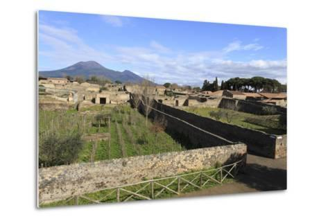 Elevated View to Mount Vesuvius-Eleanor Scriven-Metal Print