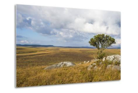 Overlook over the Highlands of the Nyika National Park, Malawi, Africa-Michael Runkel-Metal Print