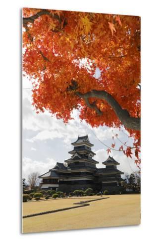 Matsumoto-Jo (Wooden Castle) in Autumn, Matsumoto, Central Honshu, Japan, Asia-Stuart Black-Metal Print