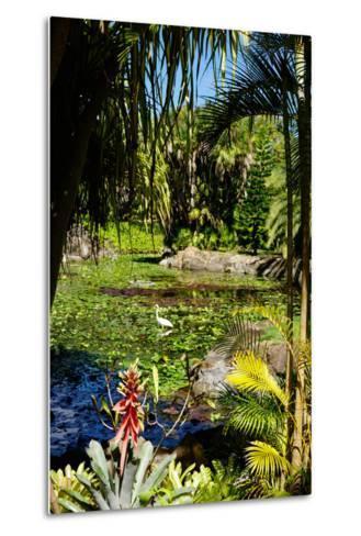 Nevis Botanical Garden, Nevis, St. Kitts and Nevis-Robert Harding-Metal Print