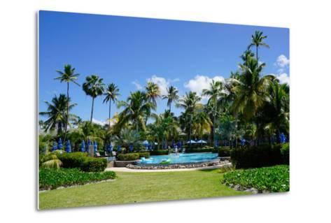 Nevis, St. Kitts and Nevis, Leeward Islands, West Indies, Caribbean, Central America-Robert Harding-Metal Print