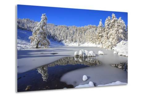Snow Covered Trees Reflected in the Casera Lake-Roberto Moiola-Metal Print