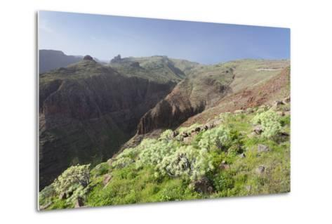 Barranco De Vera Valley, Roque Del Sombrero Mountain, Near San Sebastian-Markus Lange-Metal Print