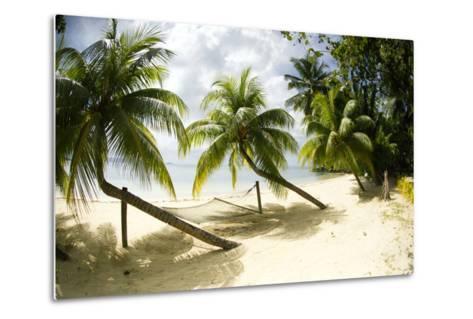 Tropical Island Beach with Hammock at Matangi Island Resort, Vanua Levu, Fiji, Pacific-Louise Murray-Metal Print