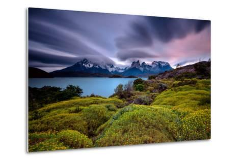 A Patagonia Scenic with the Andes Mountains, a Lake, Green Growth, Wildflowers, and Clouds--Metal Print