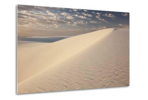 View of White Sand Dune at Sunrise in White Sands National Monument-Derek Von Briesen-Metal Print