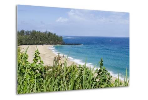 Waikoko Beach, Kauai, Hawaii, United States of America, Pacific-Michael DeFreitas-Metal Print