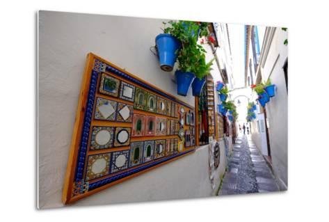 Calle De Las Flores, Cordoba, Andalucia, Spain-Carlo Morucchio-Metal Print