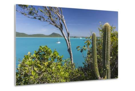 Panoramic View of Spearn Bay from a Hill Overlooking the Quiet Lagoon Visited by Many Sailboats-Roberto Moiola-Metal Print