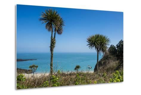 Belvoir Bay, Herm, Channel Islands, United Kingdom-Michael Runkel-Metal Print
