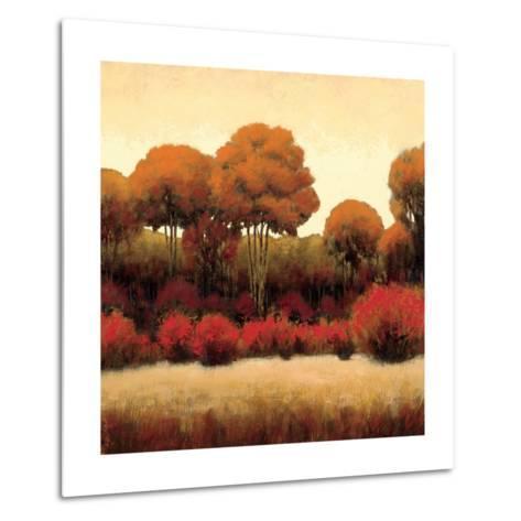 Autumn Forest II-James Wiens-Metal Print