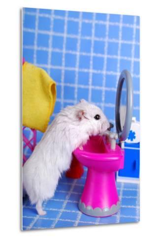 Hamster In The Bathroom- teresaterra-Metal Print