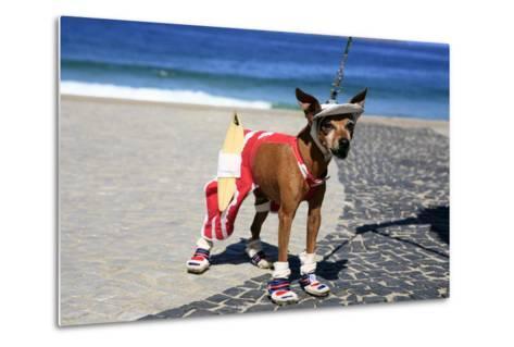 Ipanema Surfer Dog-OSTILL-Metal Print