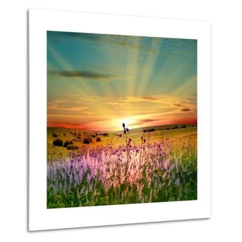 Sunset Is In The Field-nadiya_sergey-Metal Print
