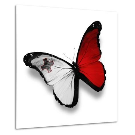 Maltese Flag Butterfly, Isolated On White-suns_luck-Metal Print