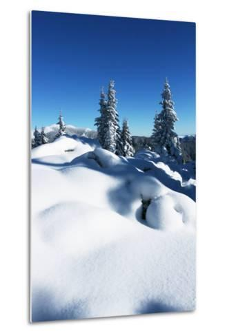 Winter Forest in Mountains-Andrushko Galyna-Metal Print
