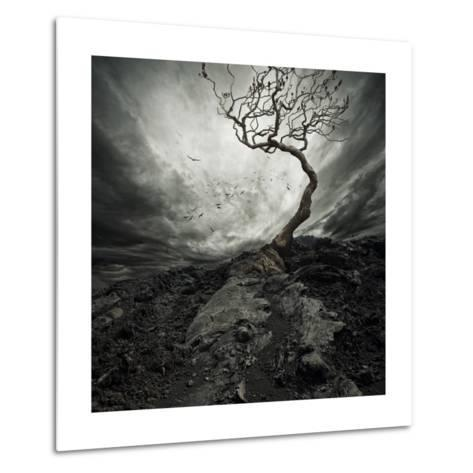 Dramatic Sky Over Old Lonely Tree-NejroN Photo-Metal Print