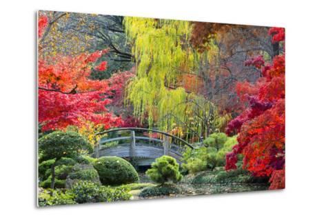 Moon Bridge in the Japanese Gardens-Dean Fikar-Metal Print