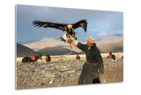 Mongolia - 25 July: the Senior Mongolian Horseman in Traditional Clothing with Golden Eagles During-TTstudio-Metal Print