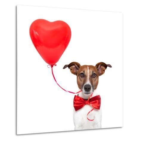 Dog In Love-Javier Brosch-Metal Print