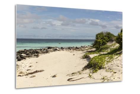 View of Beach and Sea of Zanj, Ihla Das Rolas, Mozambique-Alida Latham-Metal Print