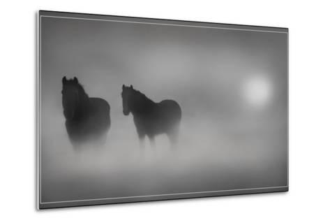 Monochrome Moods-Adrian Campfield-Metal Print