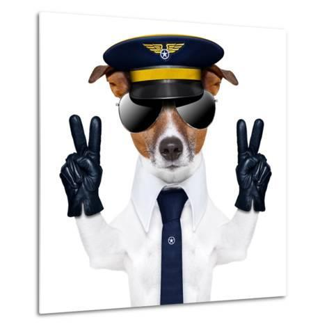 Pilot Dog-Javier Brosch-Metal Print