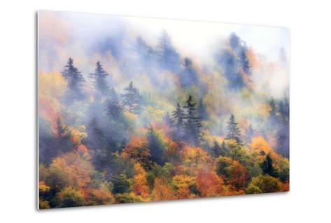 Fog over a Forested Hillside in New England Fall Colors-Robbie George-Metal Print
