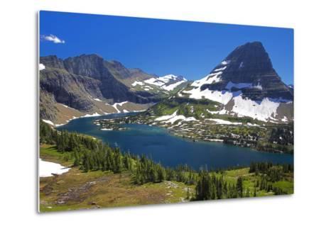 Hanging Gardens, Logan Pass, Glacier National Park, Montana, USA-Charles Gurche-Metal Print