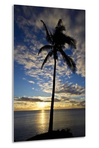 An Idyllic Palm Tree Silhouette Overlooking the Ocean at Sunset-Jason Edwards-Metal Print
