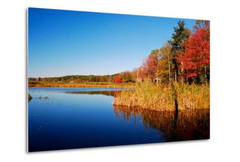 Calm Lake in New England, Connecticut, Usa-Sabine Jacobs-Metal Print