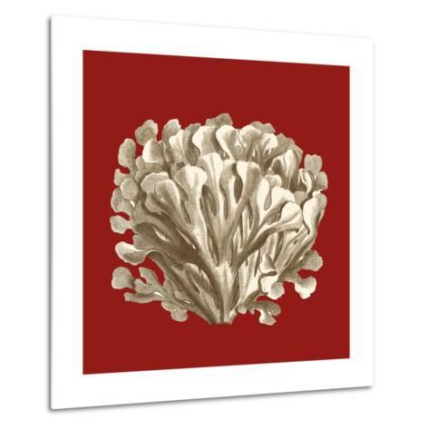 Small Coral on Red III-Vision Studio-Metal Print