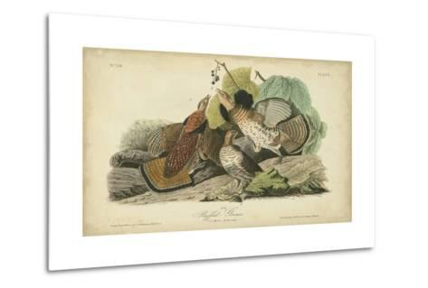 Audubon Ruffed Grouse-John James Audubon-Metal Print