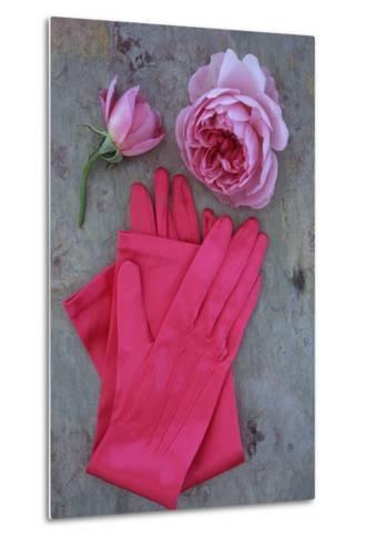 Red Gloves and Rose-Den Reader-Metal Print