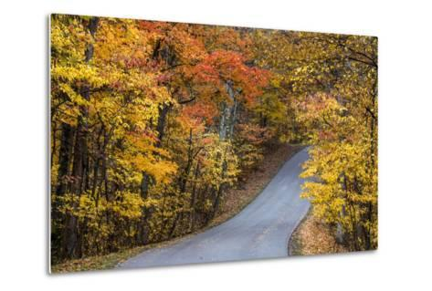 Autumn Color at Brown County State Park, Indiana, USA-Chuck Haney-Metal Print
