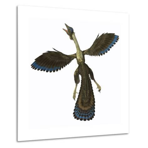 Archaeopteryx, known as One of the Earliest Prehistoric Birds--Metal Print