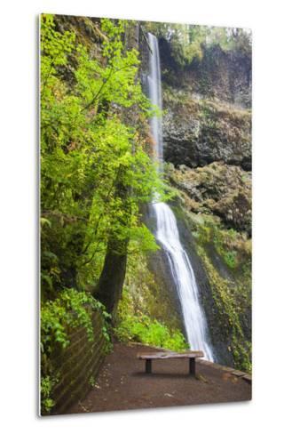 Winter Falls, Silver Falls State Park, Oregon, USA-Jamie & Judy Wild-Metal Print