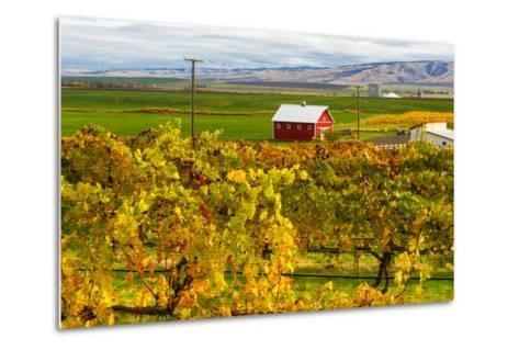 Autumn in Walla Walla Wine Country, Walla Walla, Washington, USA-Richard Duval-Metal Print