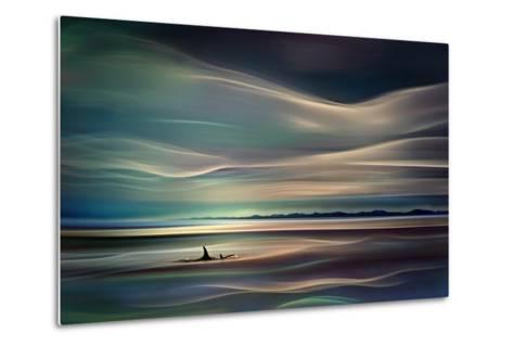 Orcas-Ursula Abresch-Metal Print
