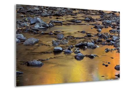 Tomahawk Creek, Leawood, Johnson County, Kansas, USA-Charles Gurche-Metal Print